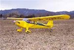 Aeronca Chief - Scale Postwar Civilian Monoplane Model Airplane Kit