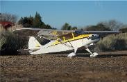 "Piper Pacer - Sport scale Civilian Monoplane 50"" Model Airplane Kit"